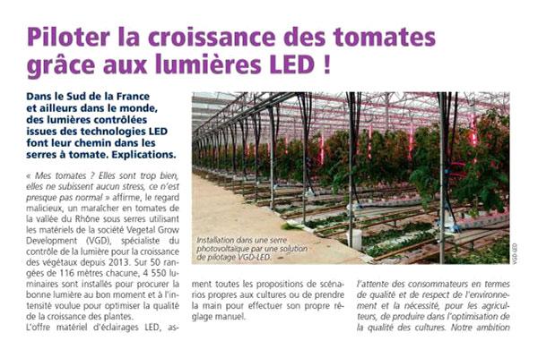 Article Piloter la croissance des tomatess grâce aux lumières led