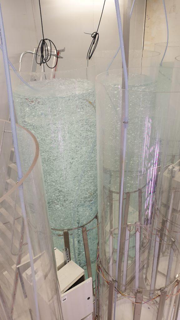 Tube culture algues