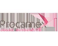 Logo Procamex