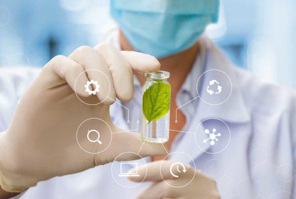 Recherche laboratoire végétal