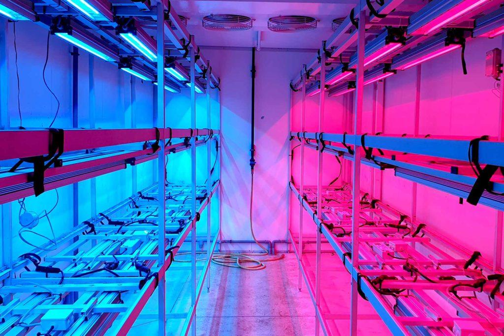 Etagères luminaire multispectral VGD